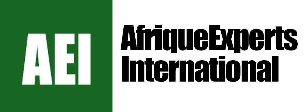 AfriExperts-logo